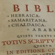 Bibbia poliglotta