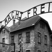 Jo Koopman, La notte di Auschwitz