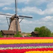 Olanda, secolarizzazione