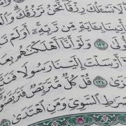 traduzioni del Corano online