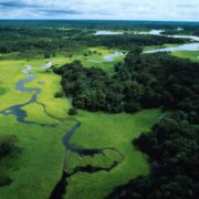 Amazzonia, terra e Sinodo
